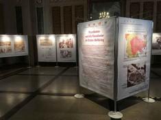 Infotafeln zu einem Quader zusammengestellt mit einer aufgedruckten Landkarte, Text und Fotos.