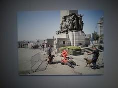 Festnahme durch zwei Polizisten mit Hunden, ein Mann liegt mit dem Rücken am Boden, ein weiterer steht über ihm.