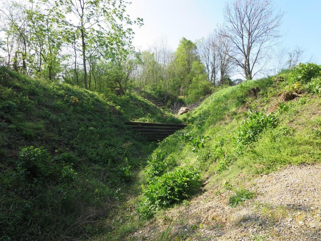 Mit Wiese bewachsene Hügel verdecken eine Treppe, dahinter einige Bäume.
